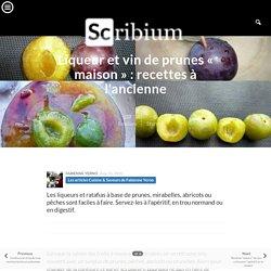 Liqueur et vin de prunes « maison » : recettes à l'ancienne