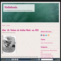 """Lire """"Le Trésor de Sabre-Noir"""" au CE1 - Kalolanéa III"""