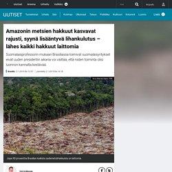 Amazonin metsien hakkuut kasvavat rajusti, syynä lisääntyvä lihankulutus – lähes kaikki hakkuut laittomia