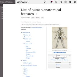 List of human anatomical features