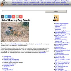 List of Hunting Dog Breeds