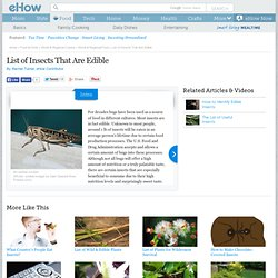 A List of Edible Insects