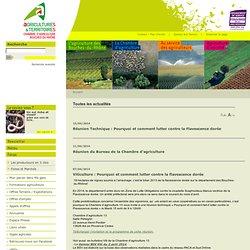 CHAMBRE D AGRICULTURE BOUCHES DU RHONE 15/02/10 Agriculture Biologique : résultats du baromètre sur la consommation et la percep