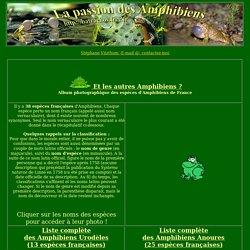 Liste des Amphibiens de France