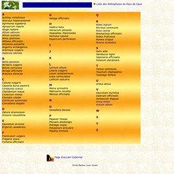 Plante m dicinale pearltrees - Liste des plantes medicinales ...