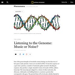 Listening to the Genome: Music or Noise?