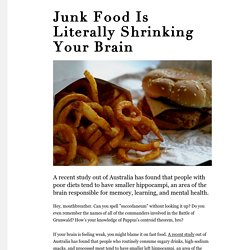 Junk Food Is Literally Shrinking Your Brain - MUNCHIES