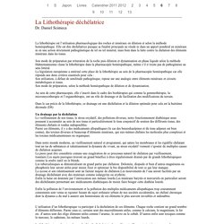 La Lithothérapie déchélatrice Dr. Daniel Scimeca