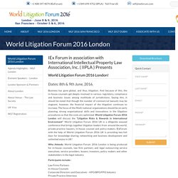 Discussion regarding the Litigation risks and rewards in the international environment