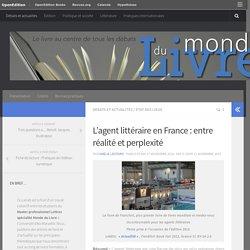 L'agent littéraire en France : entre réalité et perplexité – Monde du Livre
