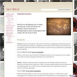 Litterära termer - SA11BSv2