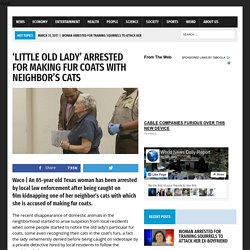'Little old lady' Arrested for Making Fur Coats with Neighbor's Cats – World News Daily Report