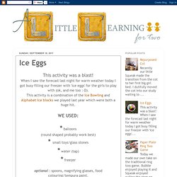 A Little Learning For Two: Ice Eggs