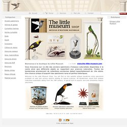 www.the-little-museum-shop.com