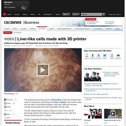 Liver-like cells