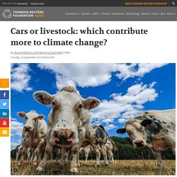 Cars or livestock: which contribute more to climate change?