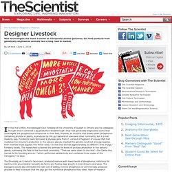 Designer Livestock