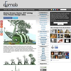 Home-Grown Home: DIY Living Tree House Design Idea
