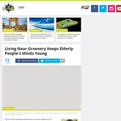 Living Near Greenery Keeps Elderly People's Minds Young