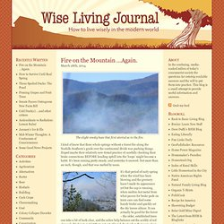 Wise Living Journal - Living wisely in the modern world