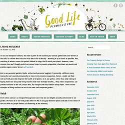 Good Life Permaculture