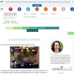 Living Moss Ball Tutorial - Creative Green Living