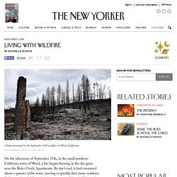 Living with Wildfire - The New Yorker