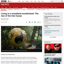 Living in a woodland wonderland: The rise of the tree house