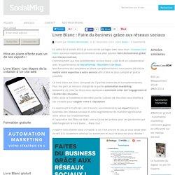 Livre Blanc : Faire du business grâce aux réseaux sociaux
