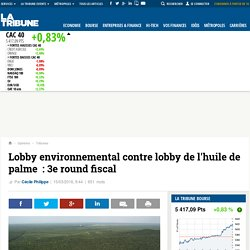Lobby environnemental contre lobby de l'huile de palme: 3e round fiscal