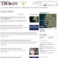News TBO