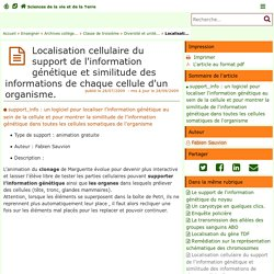 Localisation cellulaire du support de l'information génétique et similitude des informations de chaque cellule d'un organisme. - Sciences de la vie et de la Terre