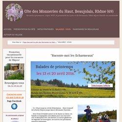 Location vacances, gîte France, 3 chambres, 8 personnes, Beaujolais, Lyon, Rhône Alpes - Balade avec un guide de pays, visite guidée Beaujolais, Anne Fimbel