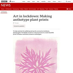 Art in lockdown: Making anthotype plant prints