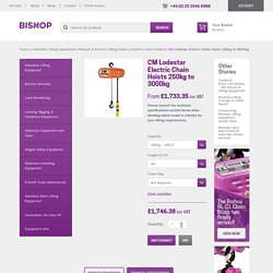 Lodestar 1 ton electric hoist and 2 ton electric hoist available at Bishop.