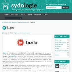 Bunkr - Logicel de vieille et de présentation