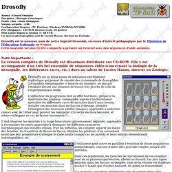 Drosofly