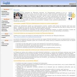 Logiciel de Filtrage URL Web Internet avec la liste noire de Toulouse pour école, collège, lycée, CDI, hotspot Wi-Fi.