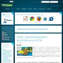 Pylote : logiciel de géométrie dynamique pour les TBI