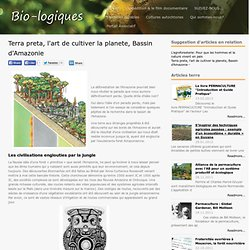 Terra preta, l'art de cultiver la planete, Bassin d'Amazonie