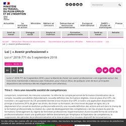 « Avenir professionnel » - Ministère du Travail, de l'Emploi et de l'Insertion