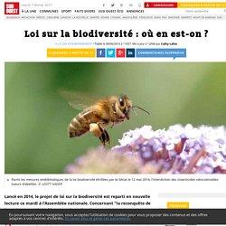 Loi sur la biodiversité: où en est-on? - Sud Ouest.fr