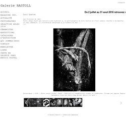 Loïc Guston - Galerie Rastoll