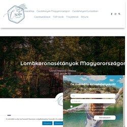 Lombkoronasétányok Magyarországon - kirándulás méterekkel a föld felett - Csodahelyek