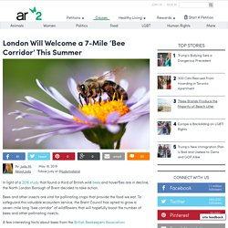 London Will Welcome A 7-Mile 'Bee Corridor' This Summer