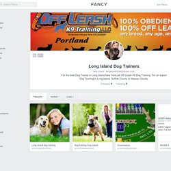 Long Island Dog Trainers Profile on Fancy