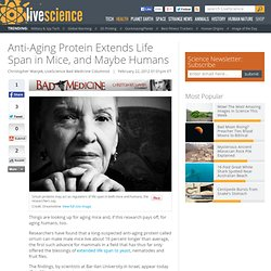 Anti-Aging Protein Extends Life Span in Mice, and Maybe Humans