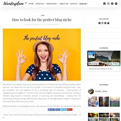 How to look for the perfect blog niche - Wanderplane