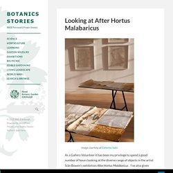 Looking at After Hortus Malabaricus