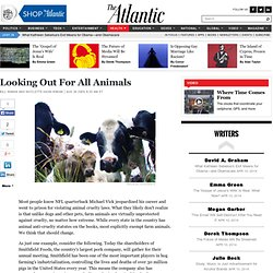 Looking Out For All Animals - The Atlantic Food Channel